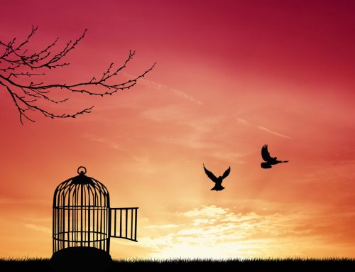 Dotiki svobode: Duhovni in neduhovni človek